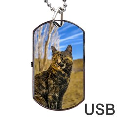 Adult Wild Cat Sitting and Watching Dog Tag USB Flash (One Side)
