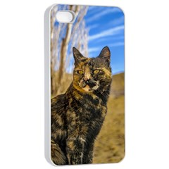 Adult Wild Cat Sitting and Watching Apple iPhone 4/4s Seamless Case (White)