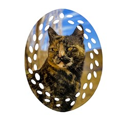 Adult Wild Cat Sitting and Watching Oval Filigree Ornament (Two Sides)