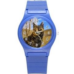 Adult Wild Cat Sitting and Watching Round Plastic Sport Watch (S)