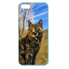 Adult Wild Cat Sitting and Watching Apple Seamless iPhone 5 Case (Color)