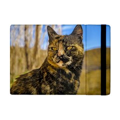 Adult Wild Cat Sitting and Watching Apple iPad Mini Flip Case