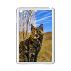 Adult Wild Cat Sitting and Watching iPad Mini 2 Enamel Coated Cases