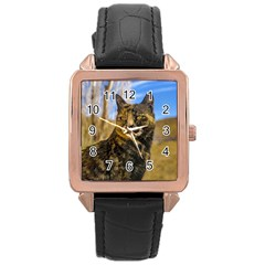 Adult Wild Cat Sitting and Watching Rose Gold Leather Watch