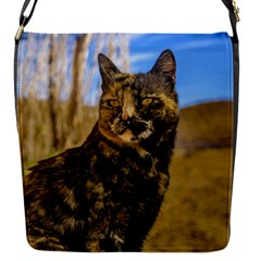 Adult Wild Cat Sitting and Watching Flap Messenger Bag (S)