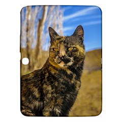 Adult Wild Cat Sitting and Watching Samsung Galaxy Tab 3 (10.1 ) P5200 Hardshell Case
