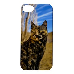 Adult Wild Cat Sitting and Watching Apple iPhone 5S/ SE Hardshell Case