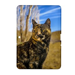 Adult Wild Cat Sitting and Watching Samsung Galaxy Tab 2 (10.1 ) P5100 Hardshell Case