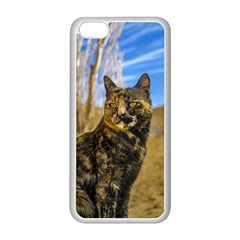 Adult Wild Cat Sitting and Watching Apple iPhone 5C Seamless Case (White)