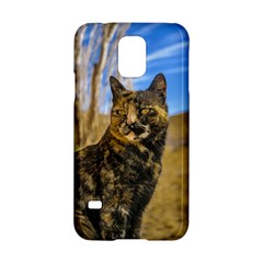 Adult Wild Cat Sitting and Watching Samsung Galaxy S5 Hardshell Case