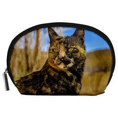 Adult Wild Cat Sitting and Watching Accessory Pouches (Large)