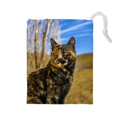 Adult Wild Cat Sitting and Watching Drawstring Pouches (Large)