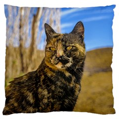 Adult Wild Cat Sitting and Watching Large Flano Cushion Case (Two Sides)