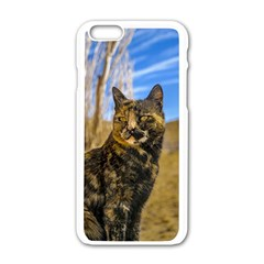 Adult Wild Cat Sitting and Watching Apple iPhone 6/6S White Enamel Case
