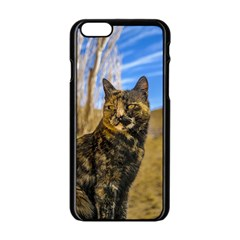 Adult Wild Cat Sitting and Watching Apple iPhone 6/6S Black Enamel Case