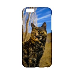 Adult Wild Cat Sitting and Watching Apple iPhone 6/6S Hardshell Case
