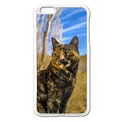 Adult Wild Cat Sitting and Watching Apple iPhone 6 Plus/6S Plus Enamel White Case