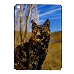 Adult Wild Cat Sitting and Watching iPad Air 2 Hardshell Cases