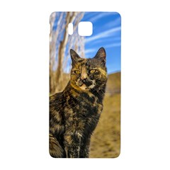 Adult Wild Cat Sitting and Watching Samsung Galaxy Alpha Hardshell Back Case