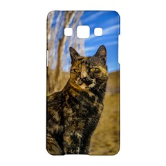 Adult Wild Cat Sitting and Watching Samsung Galaxy A5 Hardshell Case