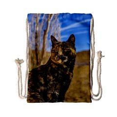 Adult Wild Cat Sitting and Watching Drawstring Bag (Small)