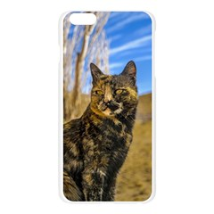 Adult Wild Cat Sitting and Watching Apple Seamless iPhone 6 Plus/6S Plus Case (Transparent)
