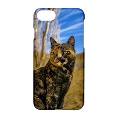 Adult Wild Cat Sitting And Watching Apple Iphone 7 Hardshell Case