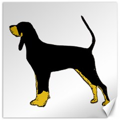 Black And Tan Coonhound Silo Color Canvas 12  x 12
