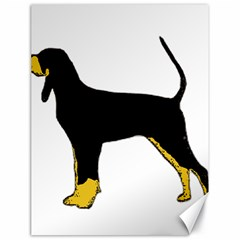 Black And Tan Coonhound Silo Color Canvas 18  x 24