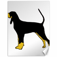 Black And Tan Coonhound Silo Color Canvas 36  x 48
