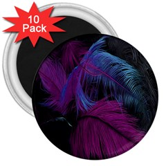 Feathers Quill Pink Black Blue 3  Magnets (10 pack)