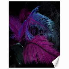Feathers Quill Pink Black Blue Canvas 12  x 16