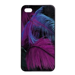 Feathers Quill Pink Black Blue Apple iPhone 4/4s Seamless Case (Black)
