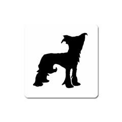 Chinese Crested Silo Black Square Magnet