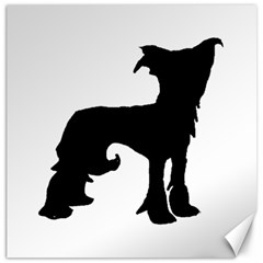 Chinese Crested Silo Black Canvas 16  x 16