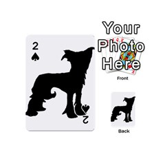 Chinese Crested Silo Black Playing Cards 54 (Mini)
