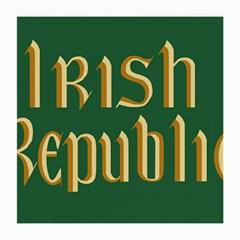 The Irish Republic Flag (1916, 1919-1922) Medium Glasses Cloth