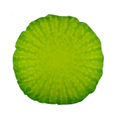 Radial Green Crystals Crystallize Standard 15  Premium Round Cushions
