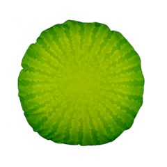 Radial Green Crystals Crystallize Standard 15  Premium Flano Round Cushions