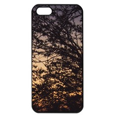 Arizona Sunset Apple iPhone 5 Seamless Case (Black)