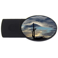 Cactus Sunset USB Flash Drive Oval (2 GB)