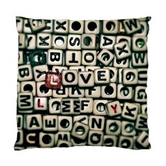 Love Standard Cushion Case (Two Sides)