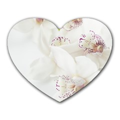Orchids Flowers White Background Heart Mousepads