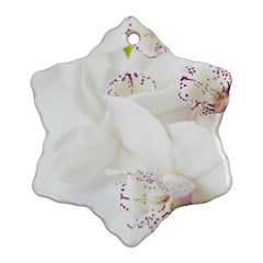 Orchids Flowers White Background Snowflake Ornament (Two Sides)