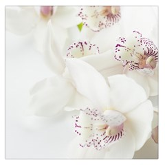Orchids Flowers White Background Large Satin Scarf (Square)