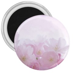 Pink Blossom Bloom Spring Romantic 3  Magnets