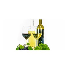 White Wine Red Wine The Bottle Satin Wrap