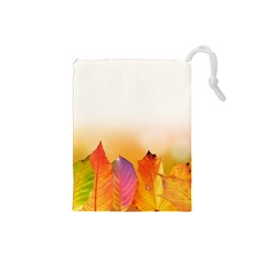 Autumn Leaves Colorful Fall Foliage Drawstring Pouches (Small)