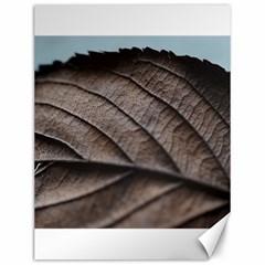 Leaf Veins Nerves Macro Closeup Canvas 12  x 16