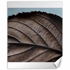 Leaf Veins Nerves Macro Closeup Canvas 16  x 20